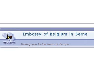 Belgian Embassy - Embassies & Consulates