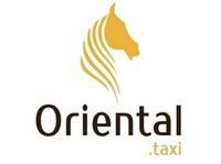 Oriental Taxi Bern - Taxi Companies