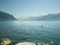 Vatel Switzerland - Hotel & Tourism Business School (8) - Business schools & MBAs