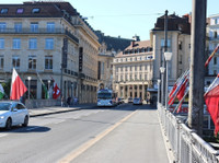 Swiss Flats Relocation (6) - Relocation services