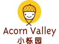 ACORN VALLEY, BADEN - Playgroups & After School activities