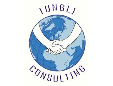 Tungli Consulting - Consultancy