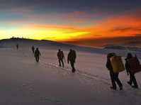 Kilimanjaro safari holidays dmc (5) - Travel Agencies