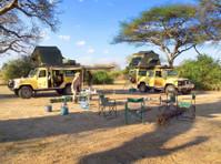 Shaw Safaris (5) - Travel Agencies