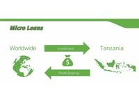 L-Pesa Microfinance (2) - Mortgages & loans
