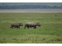 Classic Tours and Safaris Co.Ltd (4) - Agences de Voyage
