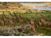 Classic Tours and Safaris Co.Ltd (6) - Agences de Voyage