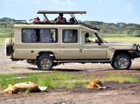 Kilimanjaro Tanzanite safaris Ltd (4) - Agences de Voyage