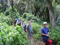 Kilimanjaro Tanzanite safaris Ltd (5) - Agences de Voyage