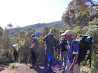 Topi Adventure Tours and Safaris (1) - Travel Agencies