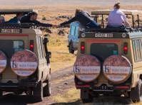 Bujo Tours and Safaris Ltd (1) - Travel Agencies