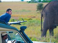 Bujo Tours and Safaris Ltd (3) - Travel Agencies