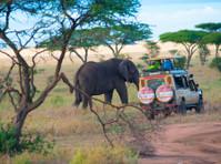 Bujo Tours and Safaris Ltd (7) - Travel Agencies