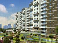 I Home International (8) - Estate Agents