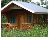 Rweteera Safari Park (6) - Travel Agencies