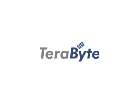 TERABYTE - DIGITAL MARKETING AGENCY DUBAI - WEBSITE DEDISN - Рекламные агентства