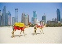Dubai Budget Tours (1) - City Tours