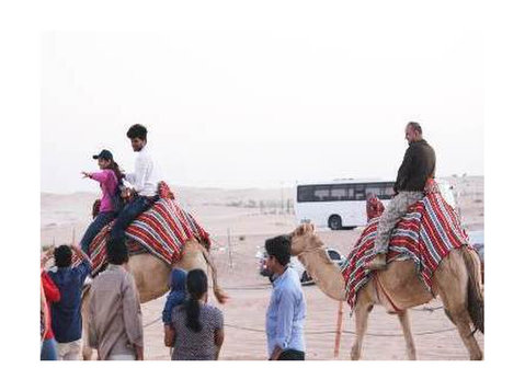Abu Dhabi Evening Safari, Cheap Desert Safari Packages - Travel sites