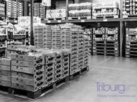 Triburg Group Of Companies (2) - Storage