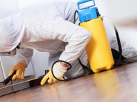Al Naas Building Cleaning (2) - Home & Garden Services