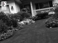 Escape Luxury Living (2) - Gardeners & Landscaping