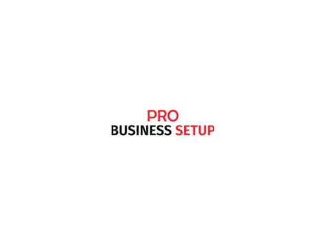 Pro business setup - Consultancy
