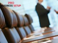 Pro business setup (1) - Consultancy
