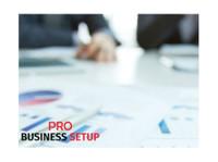 Pro business setup (2) - Consultancy