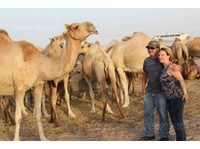 Offroad tours and safari (1) - Travel Agencies