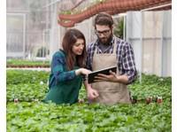 Hortica植物&花 (4) - Gardeners & Landscaping