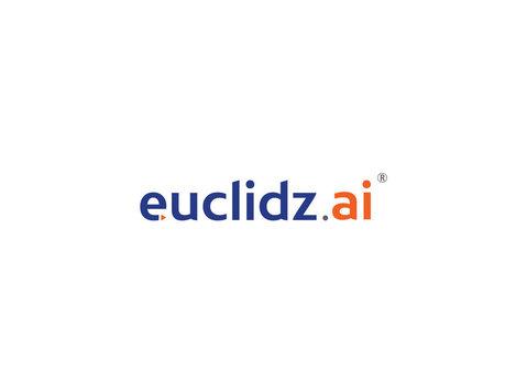 Euclidz Technologies - Consultancy