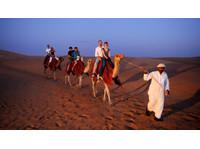 Desert Springs Tourism LLC (3) - Travel Agencies