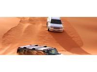 Desert Springs Tourism LLC (4) - Travel Agencies