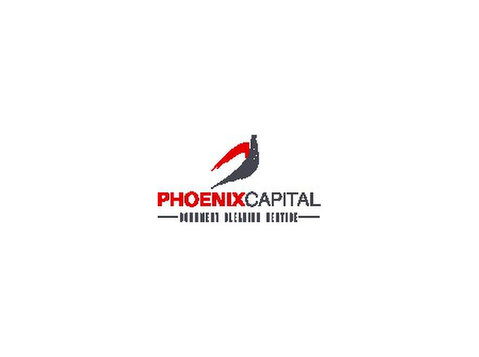 phoenixcapilauae.com - Immigration Services