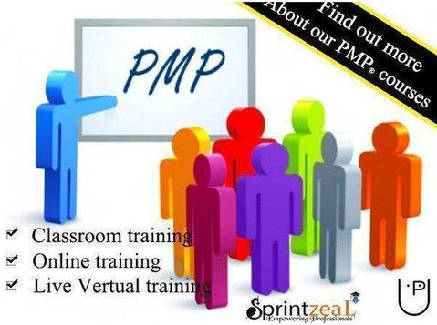 Pmp Training in Dubai - Coaching & Training