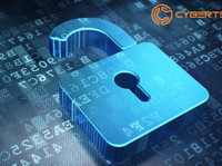 Cyberteq Dubai (1) - Security services