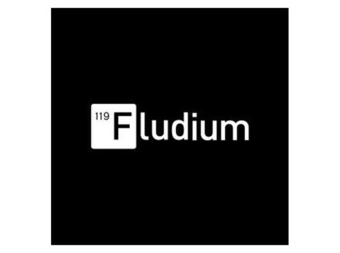 Fludium Branding Agency - Advertising Agencies