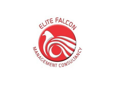 Elite Falcon Visa Consultant - Immigration Services