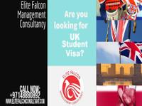 Elite Falcon Visa Consultant (1) - Immigration Services
