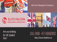 Elite Falcon Visa Consultant (2) - Immigration Services