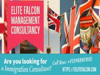 Elite Falcon Visa Consultant (6) - Immigration Services