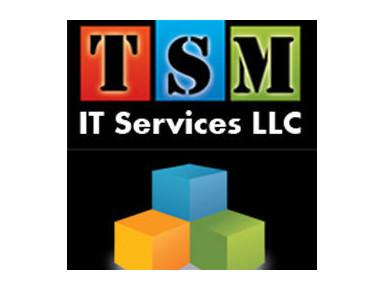 Tsm It Services L.l.c - Negozi di informatica, vendita e riparazione
