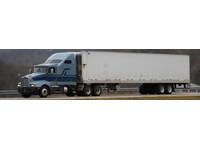 GLOBAL LOGISTICS (1) - Removals & Transport