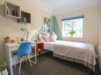 Big Student House - Brighton Student Accommodation (7) - Accommodation services