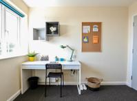 Big Student House - Brighton Student Accommodation (8) - Accommodation services