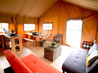 Top of the woods (2) - Camping & Caravan Sites