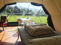 Top of the woods (4) - Camping & Caravan Sites