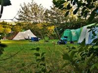 Top of the woods (5) - Camping & Caravan Sites