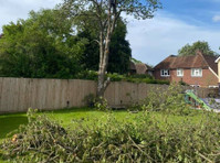 London & Berkshire Tree Care (1) - Gardeners & Landscaping