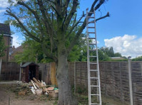 London & Berkshire Tree Care (2) - Gardeners & Landscaping